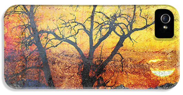 A Brilliant Observer Of Life IPhone 5 / 5s Case by Brett Pfister