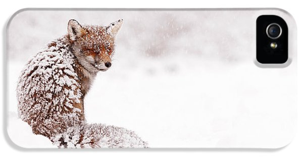 Red Fox iPhone 5 Cases - A Fox Fantasy iPhone 5 Case by Roeselien Raimond