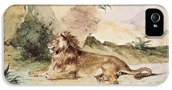 Mane iPhone 5 Cases - A Lion in the Desert iPhone 5 Case by Ferdinand Victor Eugene Delacroix