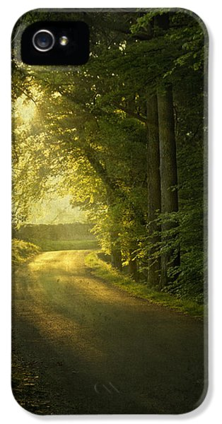 Road iPhone 5 Cases - A Path To The Light iPhone 5 Case by Evelina Kremsdorf