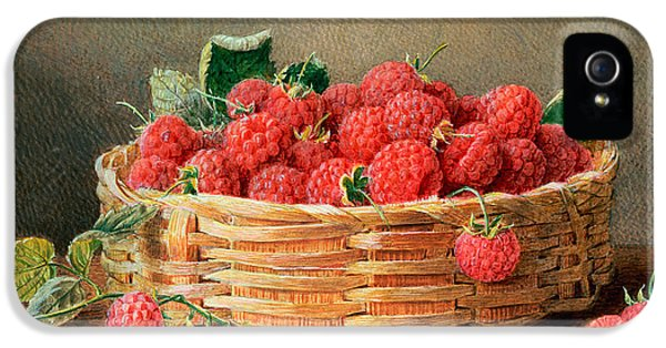 A Still Life Of Raspberries In A Wicker Basket  IPhone 5 / 5s Case by William B Hough