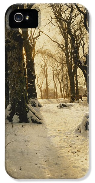 Danish iPhone 5 Cases - A Wooded Winter Landscape with Deer iPhone 5 Case by Peder Monsted