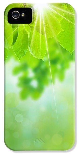 Greenish iPhone 5 Cases - Abstract Natural iPhone 5 Case by Atiketta Sangasaeng