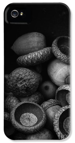 Environment Design iPhone 5 Cases - Acorns Black and White iPhone 5 Case by Edward Fielding