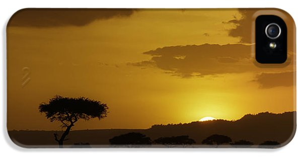 Scenic iPhone 5 Cases - African Sunrise iPhone 5 Case by Sebastian Musial