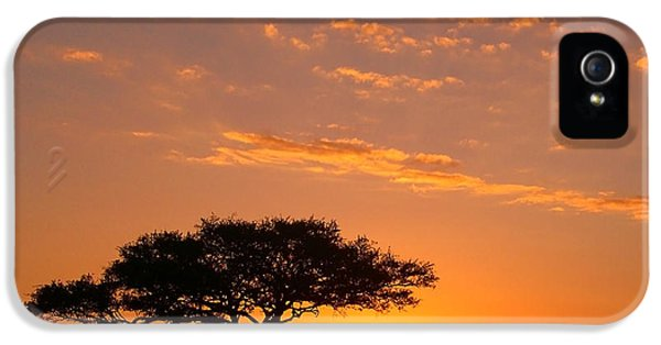 Scenic iPhone 5 Cases - African Sunset iPhone 5 Case by Sebastian Musial