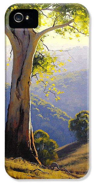 Backlight iPhone 5 Cases - Afternnon Light  iPhone 5 Case by Graham Gercken