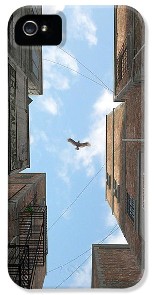 Blue Bird iPhone 5 Cases - Afternoon Alley iPhone 5 Case by Cynthia Decker