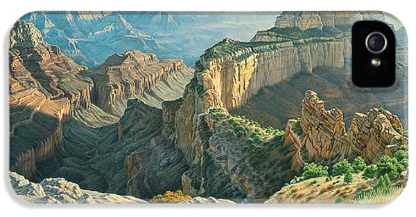 Afternoon-north Rim IPhone 5 / 5s Case by Paul Krapf