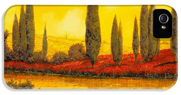 Weather iPhone 5 Cases - Al Tramonto iPhone 5 Case by Guido Borelli