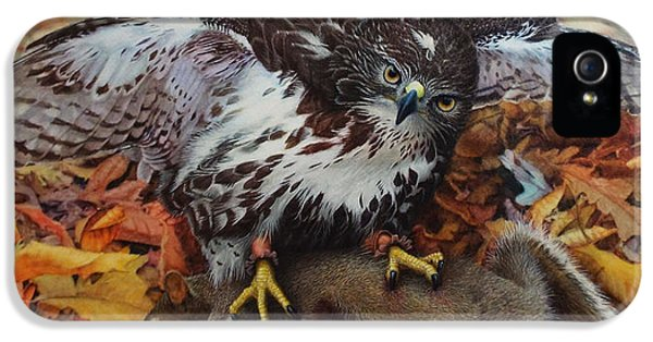 Red Tailed Hawk iPhone 5 Cases - Ali and Quints First iPhone 5 Case by Ken Everett