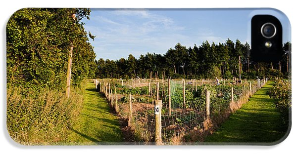 Allotment iPhone 5 Cases - Allotment Near The Wonderful Barn iPhone 5 Case by Panoramic Images