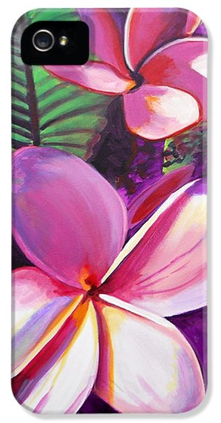 Plumerias iPhone 5 Cases - Aloha iPhone 5 Case by Marionette Taboniar