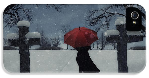 Thriller iPhone 5 Cases - Alone In The Snow iPhone 5 Case by Joana Kruse