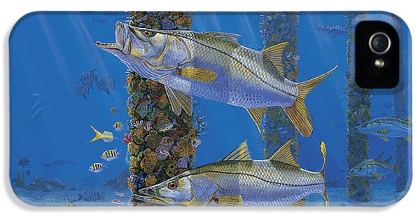 Conch iPhone 5 Cases - Ambush In0027 iPhone 5 Case by Carey Chen