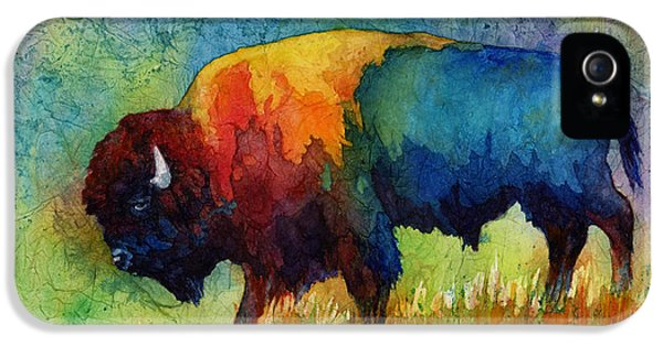 Modern Abstract iPhone 5 Cases - American Buffalo III iPhone 5 Case by Hailey E Herrera