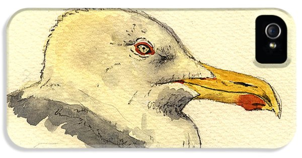 Smithsonian iPhone 5 Cases - American herring gull iPhone 5 Case by Juan  Bosco