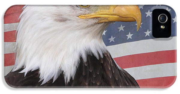 American Bald Eagle iPhone 5 Cases - American Pride iPhone 5 Case by Angie Vogel