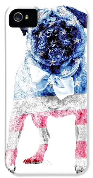 Fourth iPhone 5 Cases - American Pug iPhone 5 Case by Edward Fielding