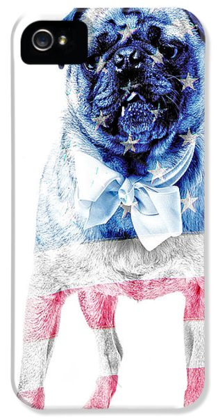 Fourth Of July iPhone 5 Cases - American Pug Phone Case iPhone 5 Case by Edward Fielding