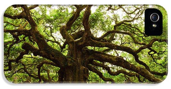 Angel Oak Tree 2009 IPhone 5 / 5s Case by Louis Dallara