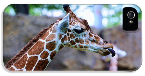 Animal - Giraffe - Sticking Out The Tounge IPhone 5 / 5s Case by Paul Ward