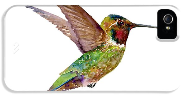 Fly iPhone 5 Cases - Anna Hummingbird iPhone 5 Case by Amy Kirkpatrick