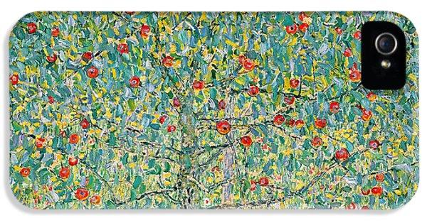 Garden iPhone 5 Cases - Apple Tree I iPhone 5 Case by Gustav Klimt