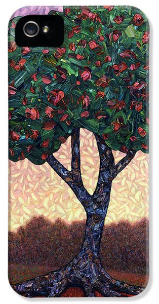 Apple Tree IPhone 5 / 5s Case by James W Johnson