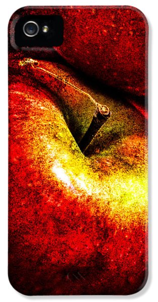 Apple iPhone 5 Cases - Apples  iPhone 5 Case by Bob Orsillo
