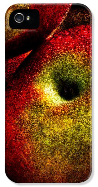 Apple iPhone 5 Cases - Apples Two iPhone 5 Case by Bob Orsillo