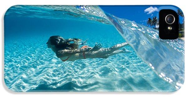 Aqua Dive IPhone 5 / 5s Case by Sean Davey