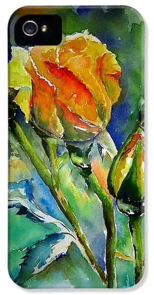 Soft iPhone 5 Cases - Aquarelle iPhone 5 Case by Elise Palmigiani