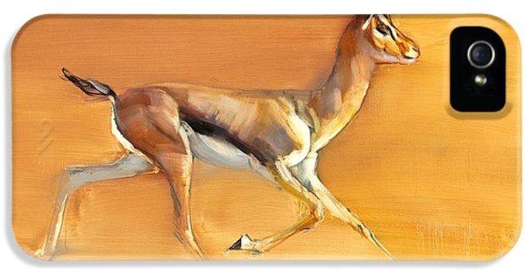 Arabian iPhone 5 Cases - Arabian Gazelle iPhone 5 Case by Mark Adlington