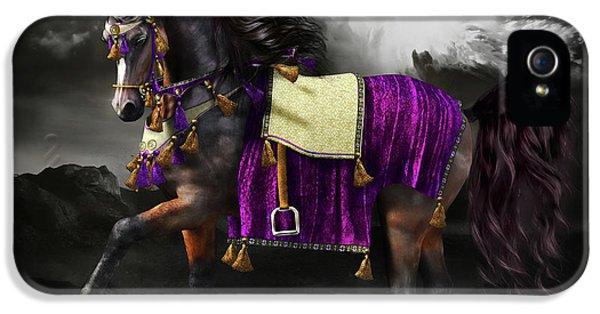 Arabian iPhone 5 Cases - Arabian Horse  Shaitan iPhone 5 Case by Shanina Conway