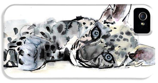 Arabian iPhone 5 Cases - Arabian Leopard Cub iPhone 5 Case by Mark Adlington