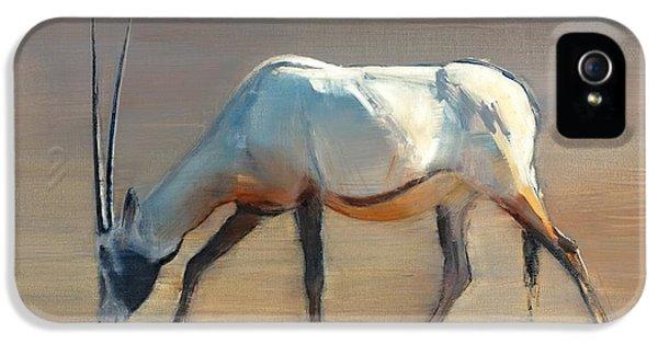 Arabian iPhone 5 Cases - Arabian Oryx iPhone 5 Case by Mark Adlington