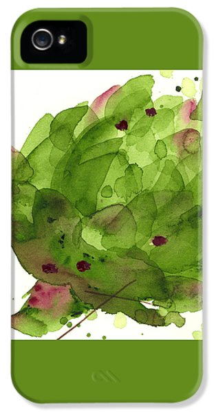 Artichoke II IPhone 5 / 5s Case by Dawn Derman
