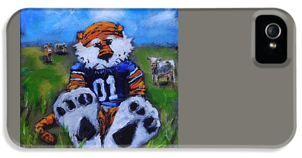 Aubie With The Cows IPhone 5 / 5s Case by Carole Foret