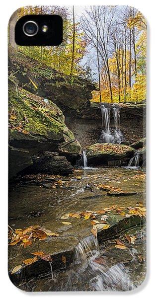 Autumn Flows IPhone 5 / 5s Case by James Dean