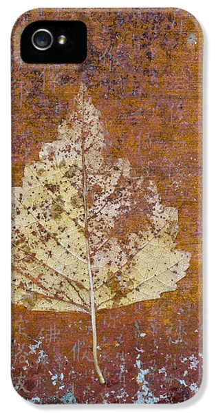 Montage iPhone 5 Cases - Autumn Leaf on Copper iPhone 5 Case by Carol Leigh