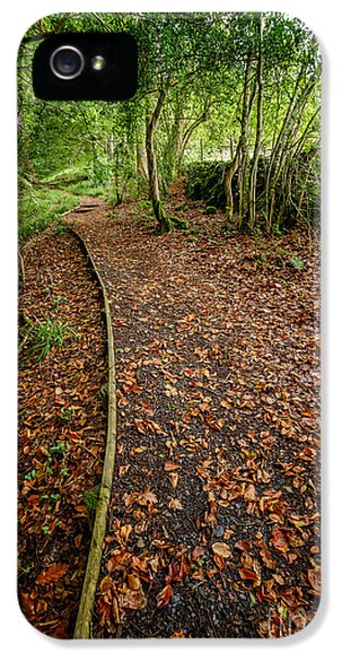 Forrest iPhone 5 Cases - Autumn Path iPhone 5 Case by Adrian Evans