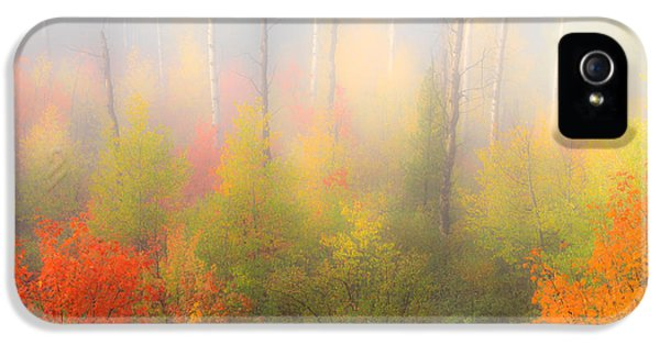 Autumn Stillness 2 IPhone 5 / 5s Case by Leland D Howard