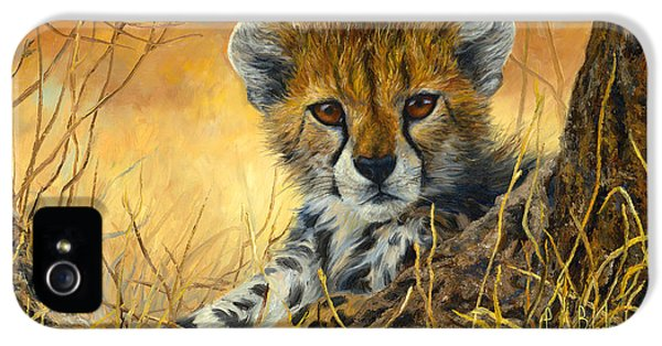 Baby Cheetah  IPhone 5 / 5s Case by Lucie Bilodeau