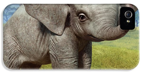 Elephant iPhone 5 Cases - Baby Elephant iPhone 5 Case by Gary Hanna