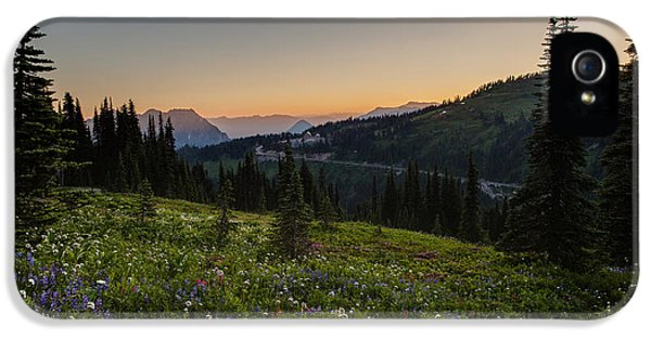 Mount Rainier iPhone 5 Cases - Back to Paradise iPhone 5 Case by Mike Reid