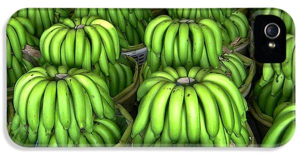Banana Bunch Gathering IPhone 5 / 5s Case by Douglas Barnett