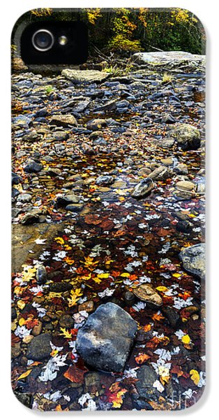 Baptize iPhone 5 Cases - Baptizing Hole in Fall iPhone 5 Case by Thomas R Fletcher
