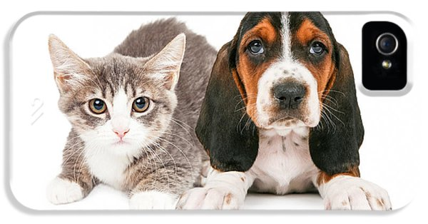 High Key iPhone 5 Cases - Basset Hound Puppy and Kitten iPhone 5 Case by Susan  Schmitz