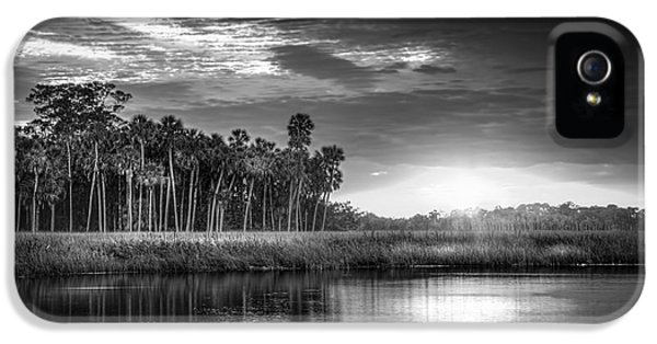 Bayou iPhone 5 Cases - Bayou Sunset-b/w iPhone 5 Case by Marvin Spates